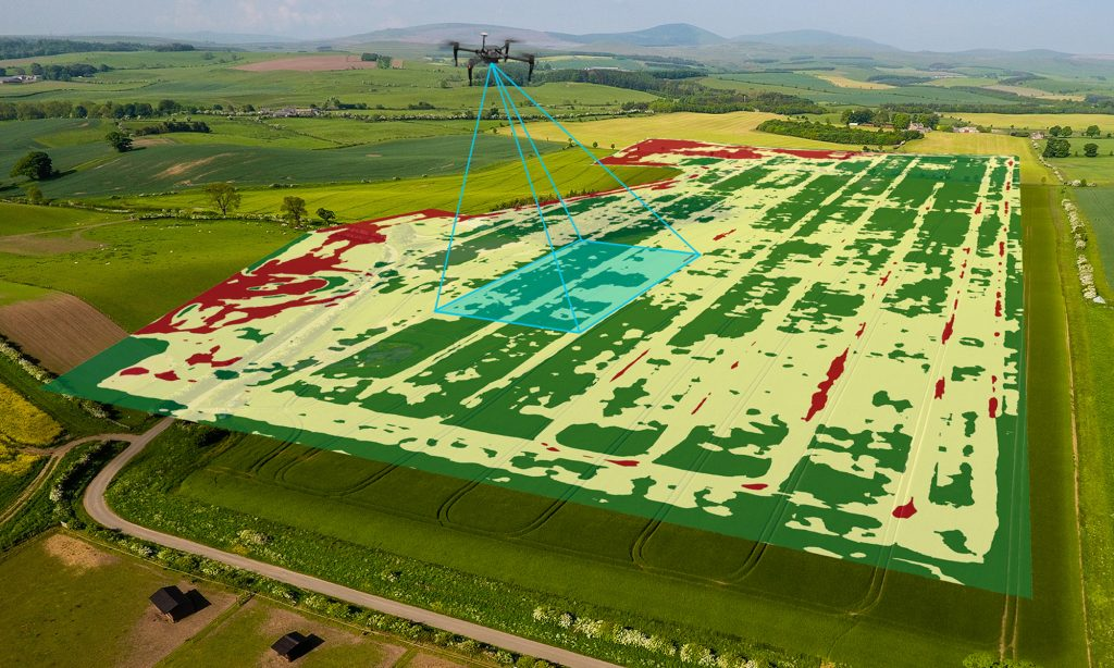 precision image taken for agriculture
